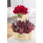 Flores de abril-3547